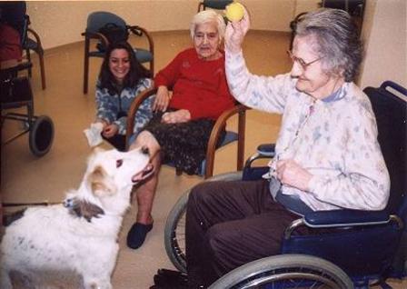 """Roma: presentazione progetto """"Umberto D"""", pet therapy per anziani"""