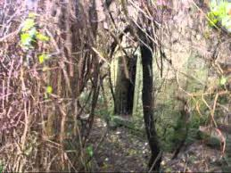 Borgo medievale in vendita su eBay