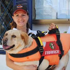 Il Labrador di Totti eroe, salva due persone in mare